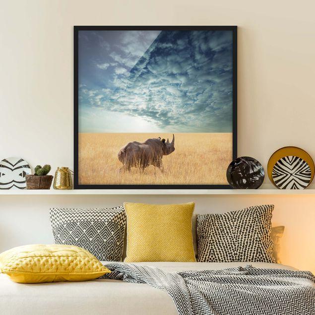 Bild mit Rahmen - Nashorn in der Savanne - Quadrat 1:1