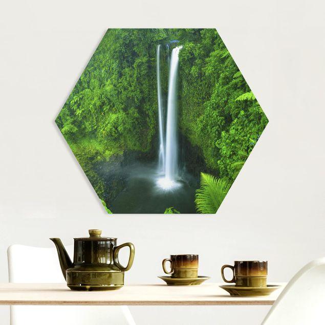 Hexagon Bild Forex - Paradiesischer Wasserfall