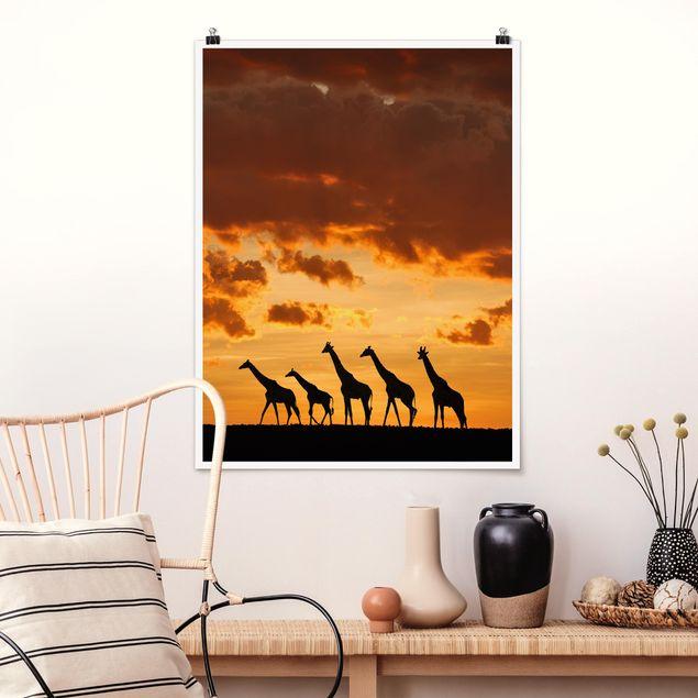 Poster - Fünf Giraffen - Hochformat 3:4
