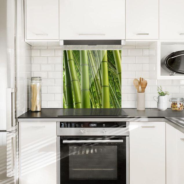 Glas Spritzschutz - Bamboo Trees - Quadrat - 1:1