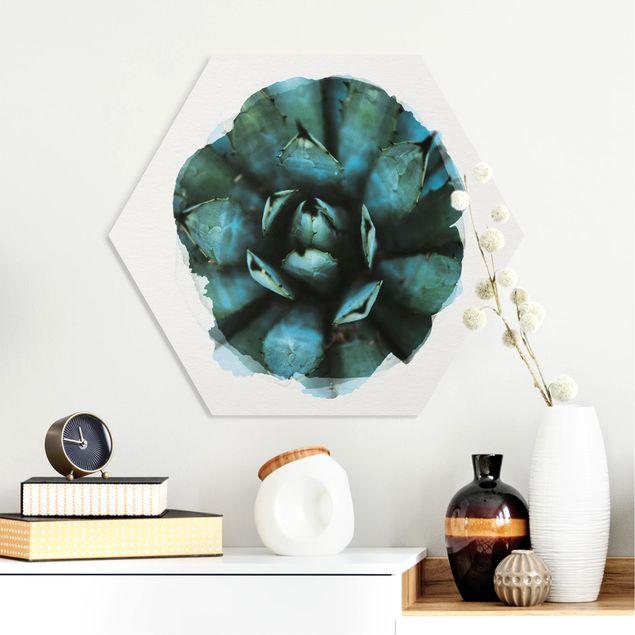 Hexagon Bild Forex - Wasserfarben - Blaue Agave