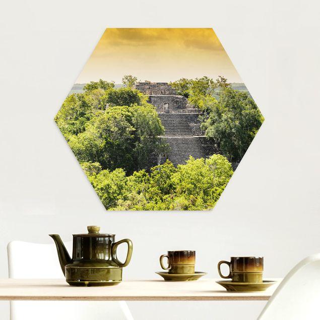 Hexagon Bild Alu-Dibond - Pyramide von Calakmul