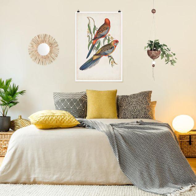 Poster - Tropische Papageien II - Hochformat 3:2