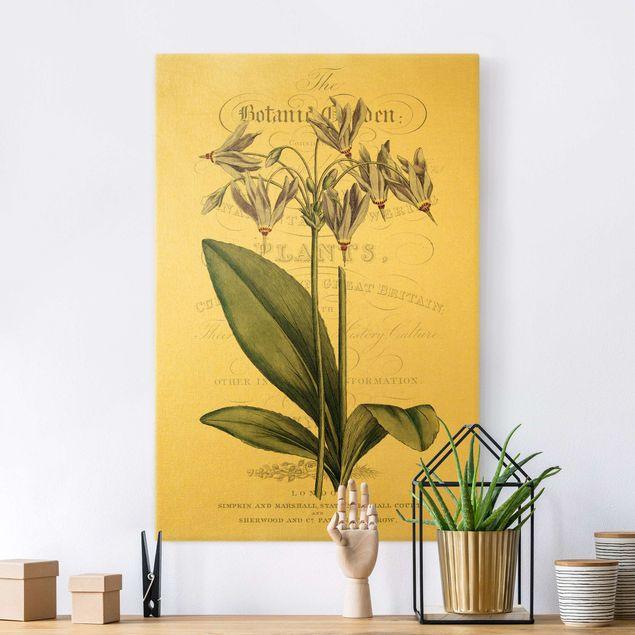 Leinwandbild Gold - Botanisches Tableau - Götterblume - Hochformat 2:3