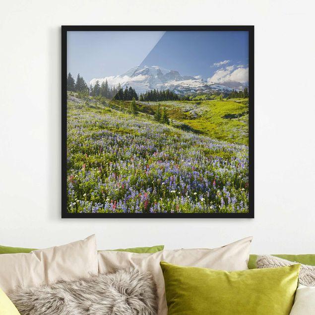 Bild mit Rahmen - Bergwiese mit Blumen vor Mt. Rainier - Quadrat 1:1