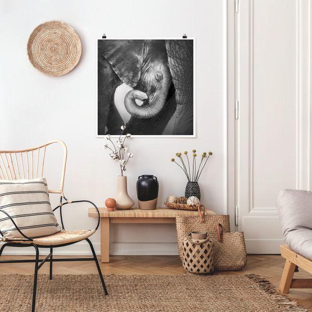 Poster - Mutterliebe - Quadrat 1:1