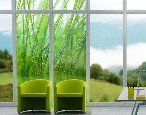 Fensterfolie - Sichtschutz Fenster - Morgentau - Fensterbilder Frühling