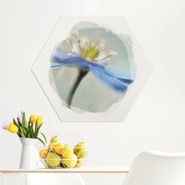 Hexagon Bild Forex - Wasserfarben - Tanzende Anemonen