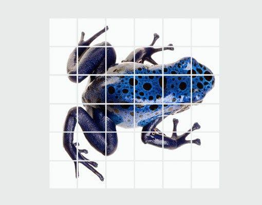 Fliesenbild - Blauer Frosch