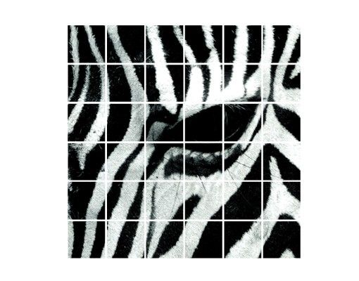 Fliesenbild - Zebra Crossing