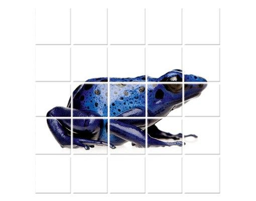 Fliesenbild - Exotischer Frosch
