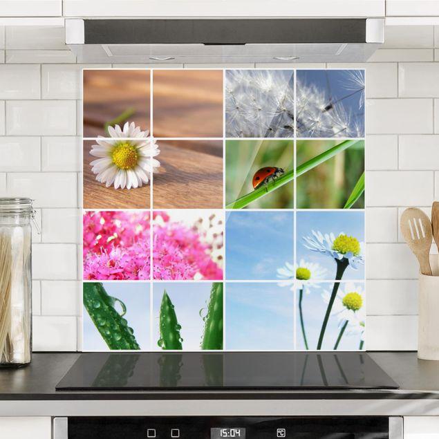Glas Spritzschutz - Spring Impression - Quadrat - 1:1