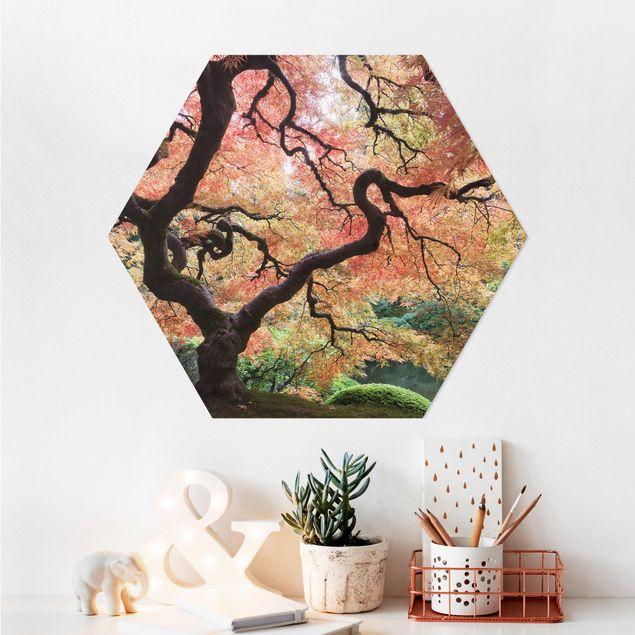 Hexagon Bild Alu-Dibond - Japanischer Garten