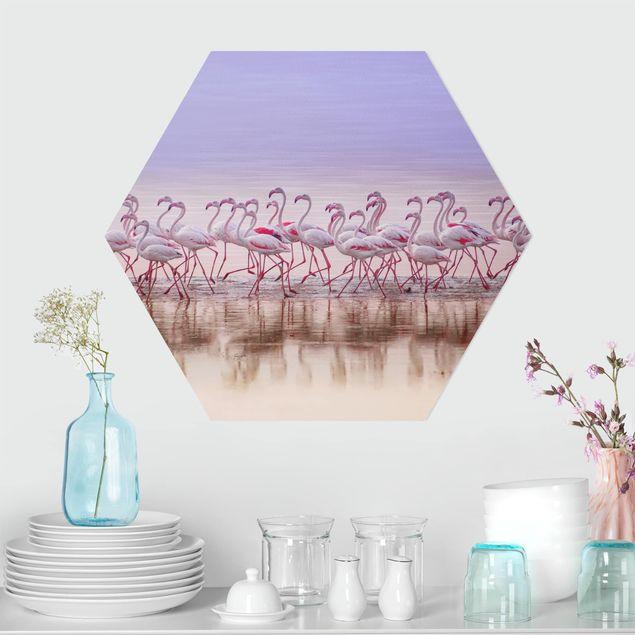 Hexagon Bild Forex - Flamingo Party