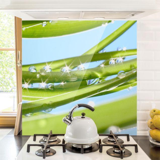 Glas Spritzschutz - Fresh Green - Quadrat - 1:1