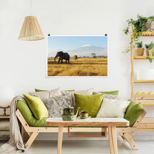 Poster - Elefanten vor dem Kilimanjaro in Kenya - Querformat 2:3