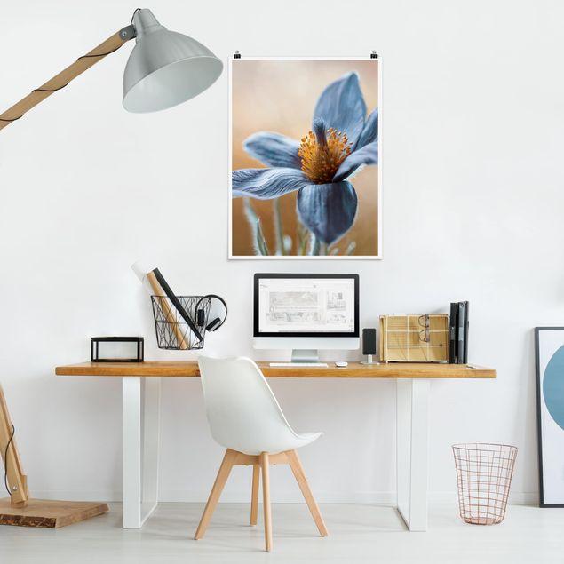 Poster - Kuhschelle in Blau - Hochformat 3:4