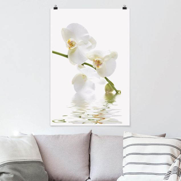 Poster - White Orchid Waters - Hochformat 3:2