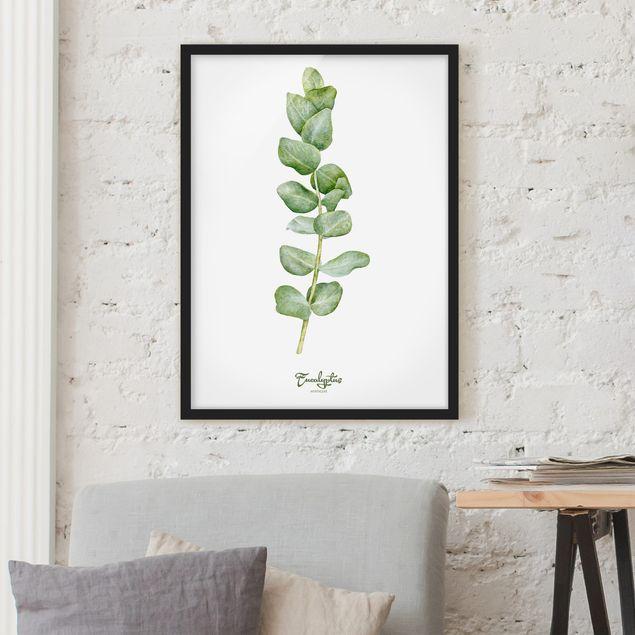 Bild mit Rahmen - Aquarell Botanik Eukalyptus - Hochformat 3:4