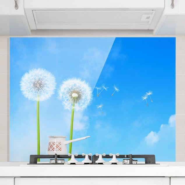 Glas Spritzschutz - Flying Seeds - Querformat - 4:3