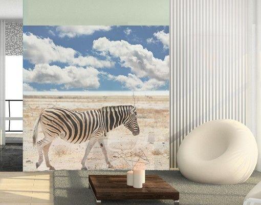Fensterfolie - Sichtschutz Fenster Zebra in der Savanne - Fensterbilder