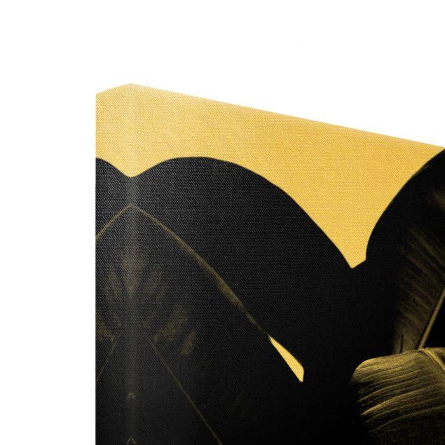 Leinwandbild Gold - Gummibaum Blätter Schwarz Weiß - Querformat 4:3
