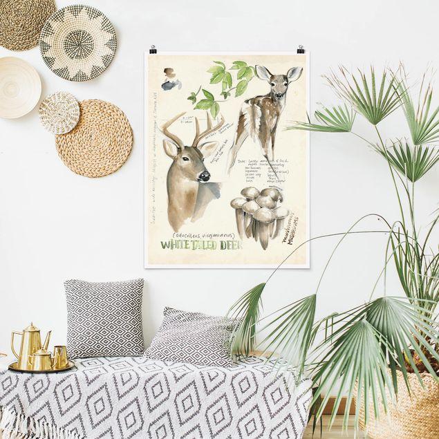 Poster - Wildnis Journal - Hirsch - Hochformat 3:4