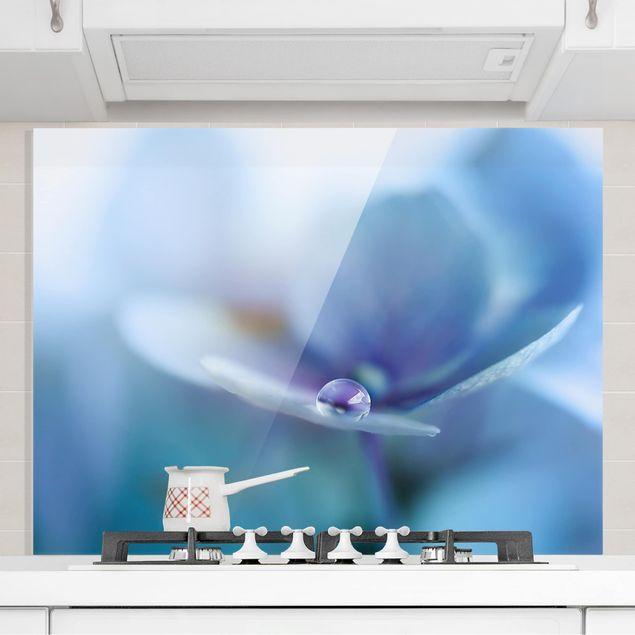 Glas Spritzschutz - Wassertropfen Hortensienblüte - Querformat - 4:3
