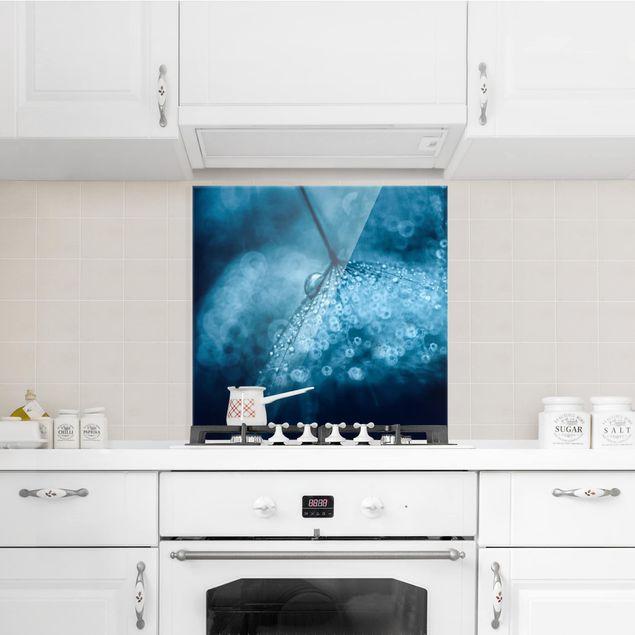 Glas Spritzschutz - Blaue Pusteblume im Regen - Quadrat - 1:1
