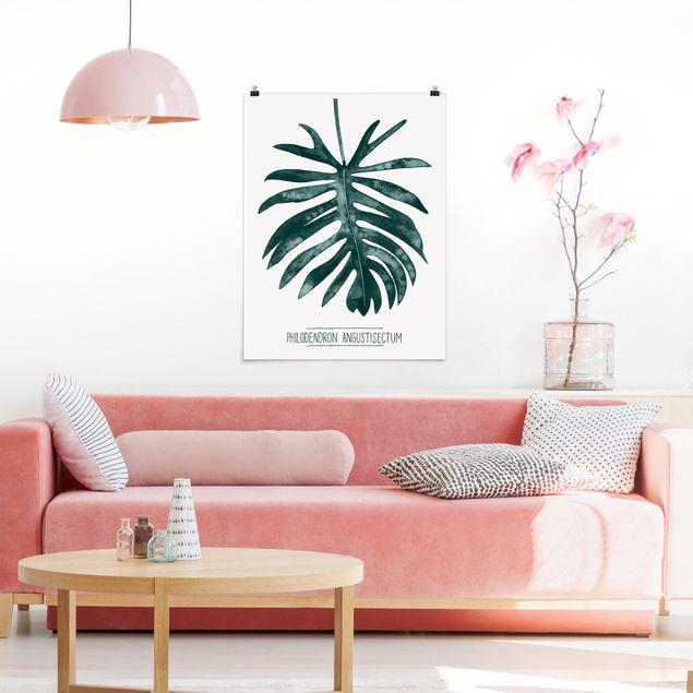 Poster - Smaragdgrüner Philodendron Angustisectum - Hochformat 3:4