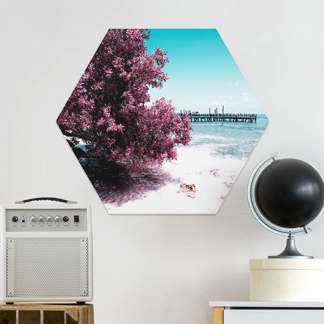 Hexagon Bild Forex - Paradies Strand Isla Mujeres