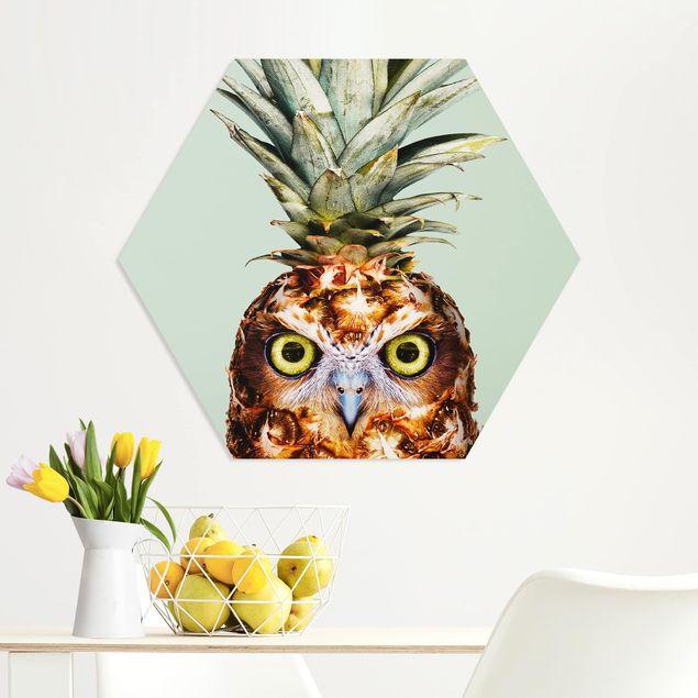 Hexagon Bild Forex - Jonas Loose - Ananas mit Eule