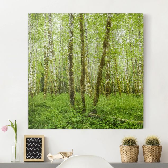 Leinwandbild - Hoh Rainforest Olympic National Park - Quadrat 1:1