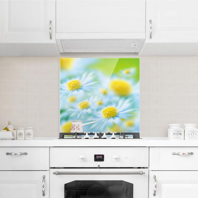 Glas Spritzschutz - Dahlien Blumenmeer weiß - Quadrat - 1:1