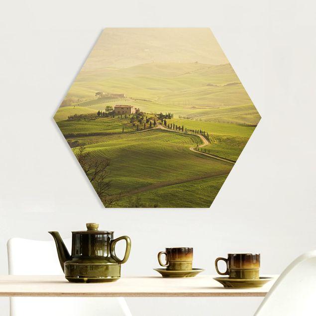 Hexagon Bild Forex - Chianti Toskana
