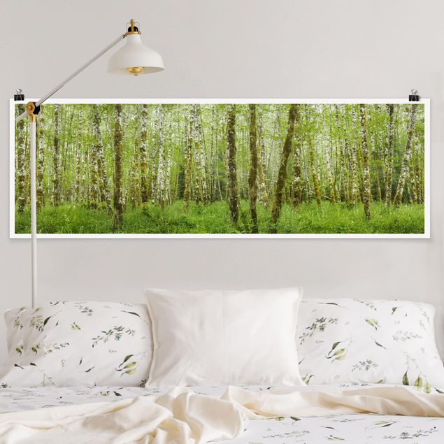 Poster - Hoh Rainforest Olympic National Park - Panorama Querformat