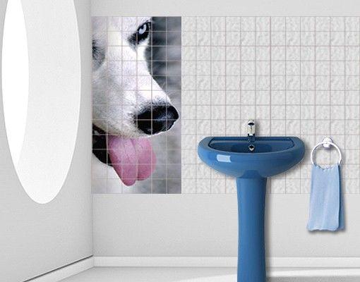 Fliesenbild - Cool Dog