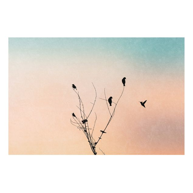 Forex Fine Art Print - Vögel vor rosa Sonne II - Querformat 2:3