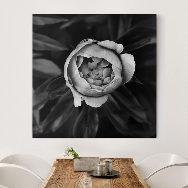 Leinwandbild - Pfingstrosenblüte vor Blättern Schwarz Weiß - Quadrat 1:1