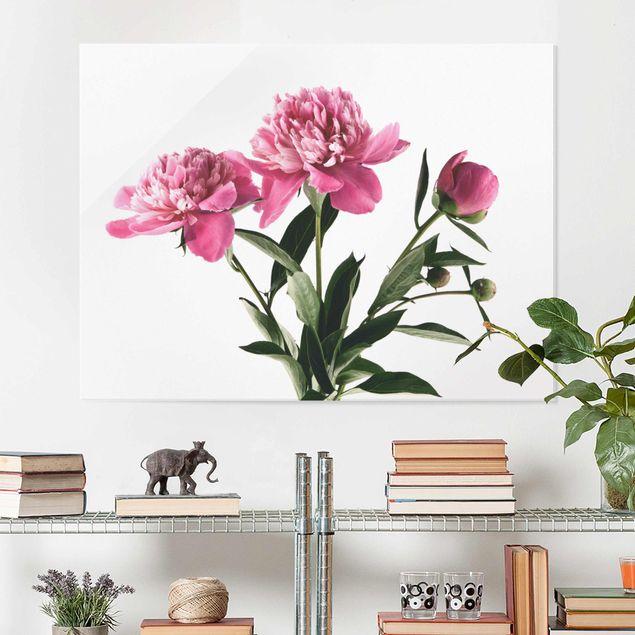 Glasbild - Blüten und Knospen Pink auf Weiß - Querformat 3:4
