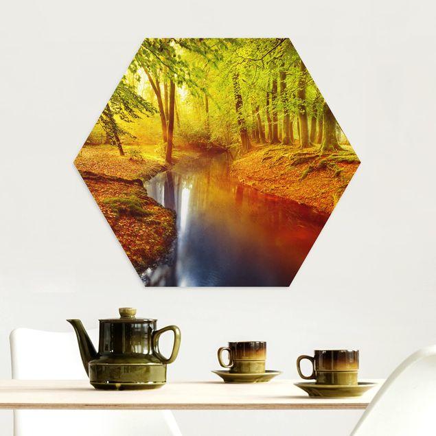 Hexagon Bild Alu-Dibond - Herbstwald
