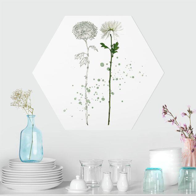 Hexagon Bild Forex - Botanisches Aquarell - Löwenzahn
