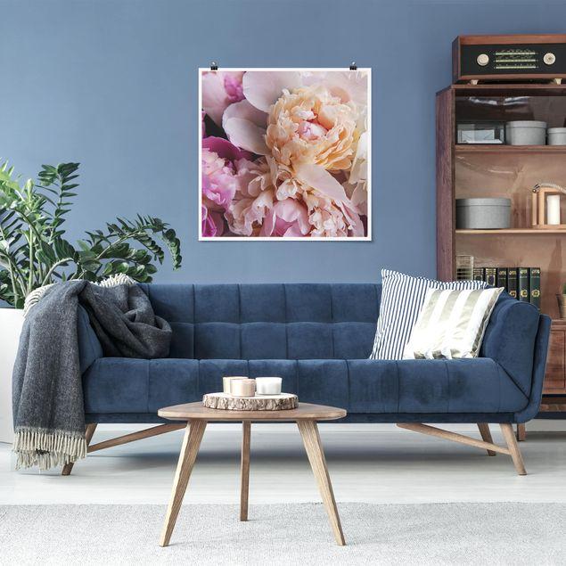 Poster - Blühende Pfingstrosen - Quadrat 1:1