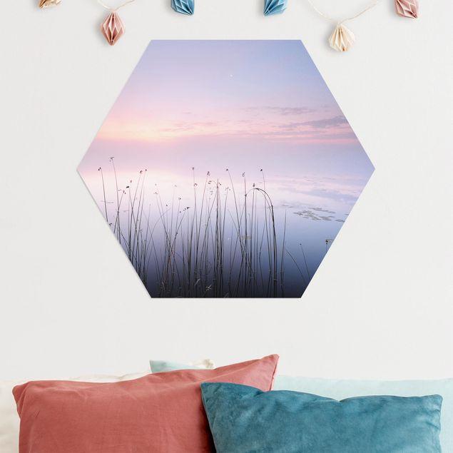 Hexagon Bild Alu-Dibond - Idylle am See