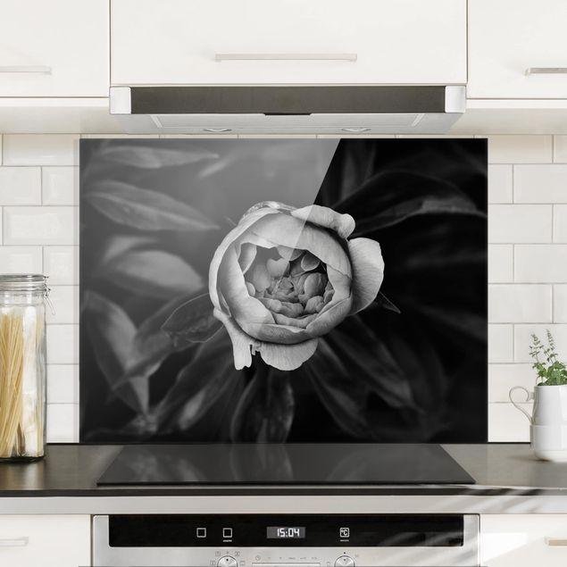 Glas Spritzschutz - Pfingstrosenblüte vor Blättern Schwarz Weiß - Querformat - 4:3
