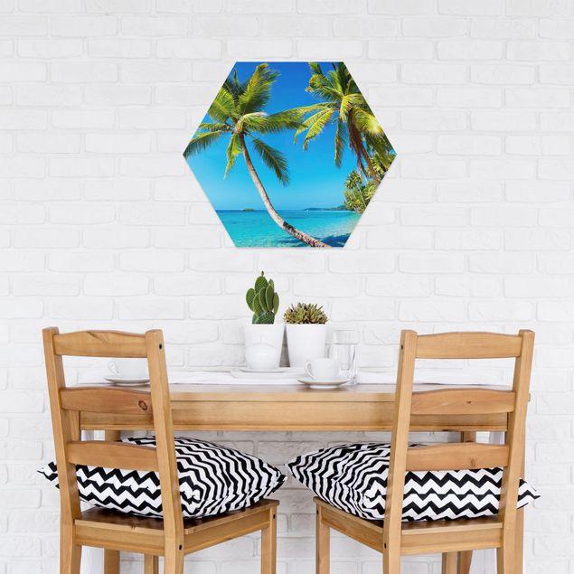 Hexagon Bild Forex - Beach of Thailand