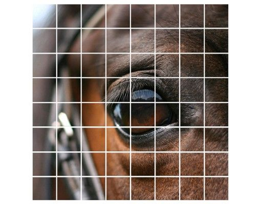 Fliesenbild - Horse Eye