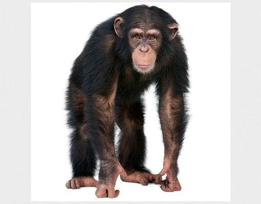 Beistelltisch - Aufmerksamer Affe