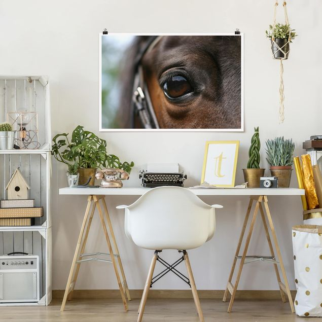 Poster - Horse Eye - Querformat 2:3