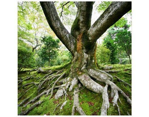 Beistelltisch - Alter Baum